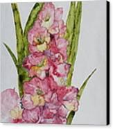 Gladiolas Canvas Print by Patsy Sharpe