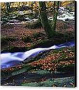 Glenmacnass Waterfall, Co Wicklow Canvas Print by The Irish Image Collection