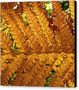 Gold Leaf Canvas Print by William Fields