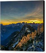 Golden Larch Canvas Print by Ian Stotesbury