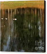 Goose Goose Duck Goose Canvas Print by Trish Hale
