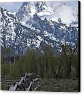Grand Teton Fence Canvas Print by Charles Warren