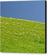 Grassy Slope View Canvas Print by Roderick Bley