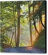Gravel Road At Sunrise, Pelham, Ontario Canvas Print by Darwin Wiggett