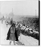 Greece Shepherds And Flocks - C 1909 Canvas Print by International  Images