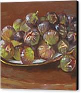 Greek Figs Canvas Print by Ylli Haruni