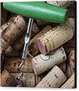 Green Corkscrew Canvas Print by Garry Gay