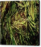 Green River Canvas Print by Odd Jeppesen