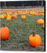 Halloween Pumpkin Patch 7d8383 Canvas Print by Wingsdomain Art and Photography