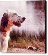 Handsome Hunter. English Setter Canvas Print by Jenny Rainbow