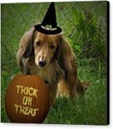 Happy Halloween Canvas Print by Victoria Sheldon