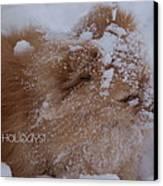 Happy Holidays Christmas Card Canvas Print by Joanne Smoley