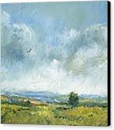 Hawk Over The Yar Valley Canvas Print by Alan Daysh