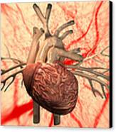 Heart, Computer Artwork Canvas Print by Equinox Graphics