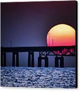 Hello Sun Canvas Print by Vicki Jauron