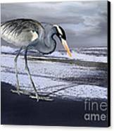 Heron Taking His Afternoon Beach Walk Canvas Print by Danuta Bennett