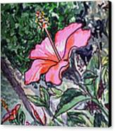 Hibiscus Sketchbook Project Down My Street  Canvas Print