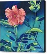 Hibisicus Canvas Print by Billie Colson