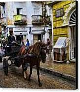 Horse And Buggy In Old Cartagena Colombia Canvas Print by David Smith