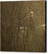 Horseback In The Garden Canvas Print by Lenore Senior