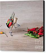 Hot Delivery 02 Canvas Print
