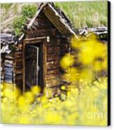 House Behind Yellow Flowers Canvas Print