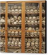 Human Skulls And Femurs Fill A Display Canvas Print by Tino Soriano