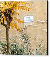 Il Piazza Malcontenti Canvas Print by Michael Flood