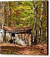 In Autumn Woods Canvas Print by Steve Harrington