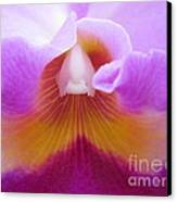 Inside An Orchid's Heart Canvas Print