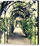 Irish Archway Canvas Print by Linde Townsend