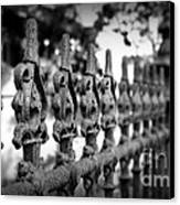 Iron Fence 2 Canvas Print by Perry Webster