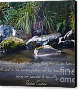 It Is A Wholesome....... Canvas Print by Karen Lewis
