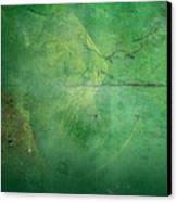 Ivy League Canvas Print by Christopher Gaston