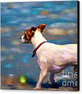 Jack At The Beach Canvas Print by Michelle Wrighton