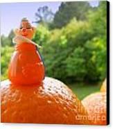 Juggling Oranges Canvas Print