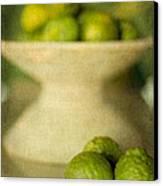 Kaffir Limes Canvas Print