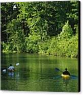 Kayakers Paddle In The Headwaters Canvas Print