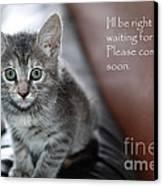 Kitten Greeting Card Canvas Print by Micah May