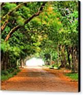 Landscape Painting Showing Road  Canvas Print by Parinya Kraivuttinun