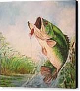 Largemouth Bass Canvas Print by Jose Lugo