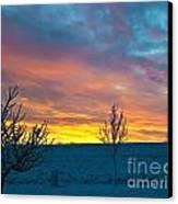 Larimer County Winter Sunrise Canvas Print by Harry Strharsky