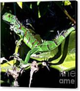 Leapin Lizards Canvas Print by Karen Wiles