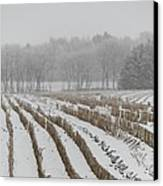Lines In The Snow Canvas Print by Odd Jeppesen