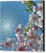 Liquid Cherry Canvas Print by Jen White