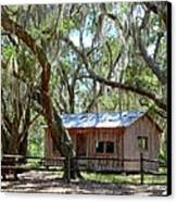 Live Oak Cabin Canvas Print by Bob Jackson