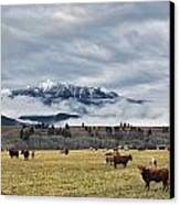 Livingstone Range And Pastureland Canvas Print by Darwin Wiggett