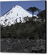 Llaima Volcano, Araucania Region, Chile Canvas Print