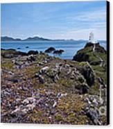 Llanddwyn Island Canvas Print by Meirion Matthias