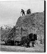 Loading Hay Canvas Print by Arthur Rothstein